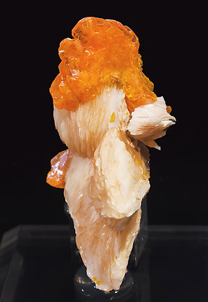 Wulfenite with Baryte. Front
