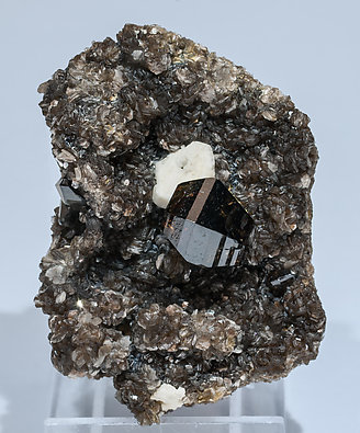Cassiterite with Feldspar and Muscovite. Front