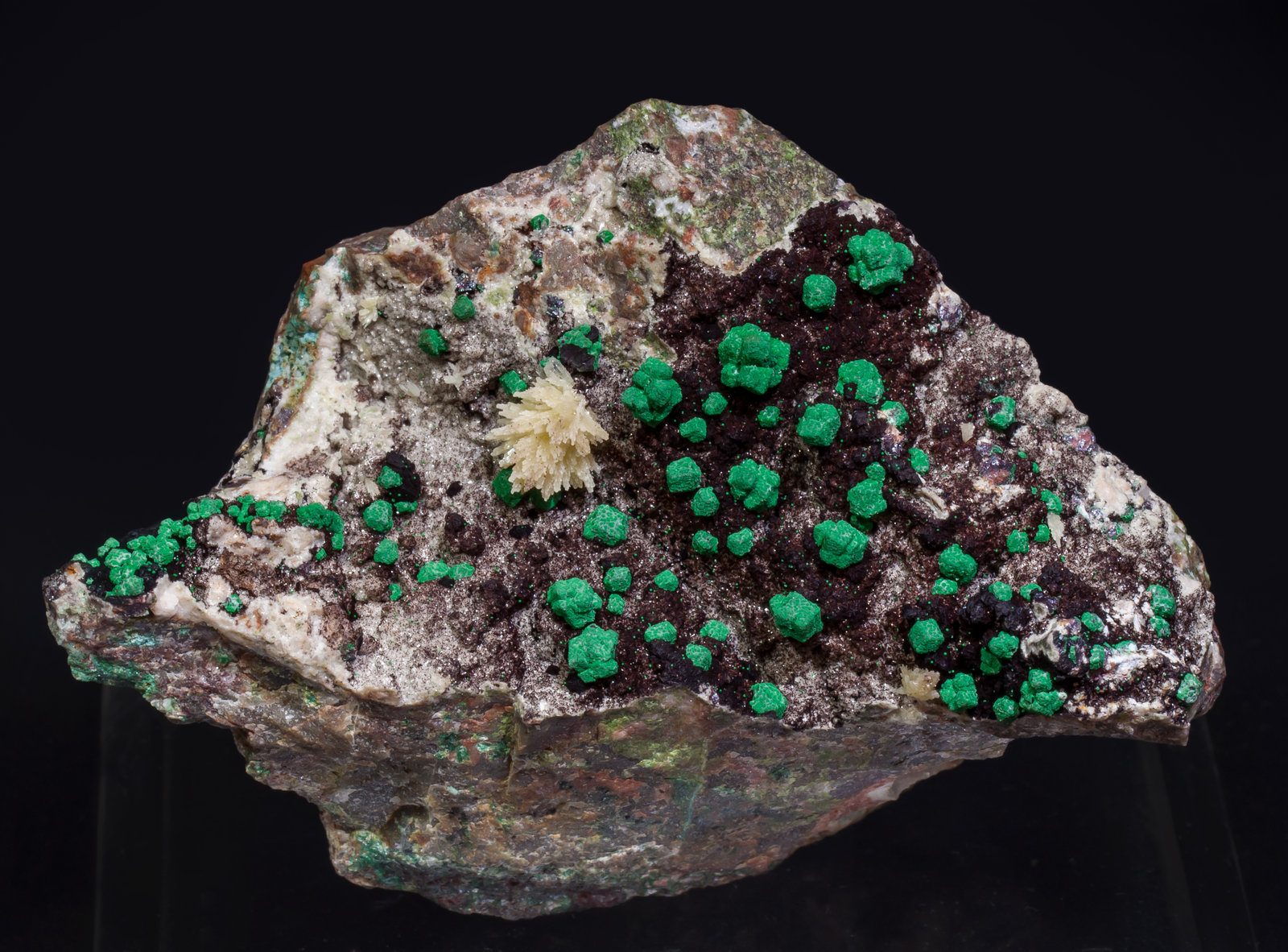 specimens/s_imagesAI8/Malachite-MT93AI8f.jpg