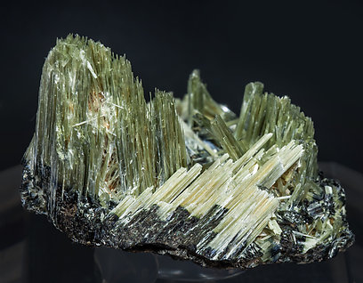 Actinolite with Ferro-actinolite. Rear