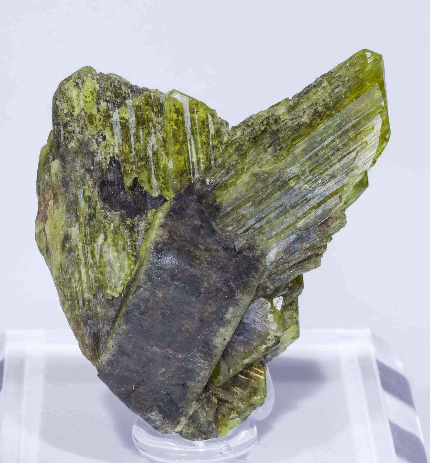 specimens/s_imagesAJ1/Chrysoberyl-MG67AJ1f.jpg