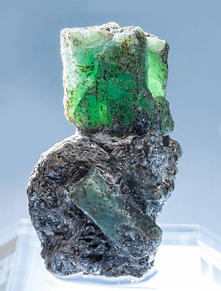 Beryl (variety emerald) with Phlogopite. Light behind