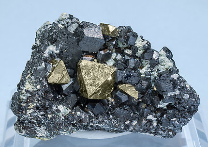 Pyrite with Magnetite.