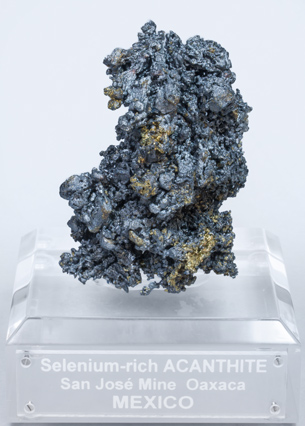 Selenium-rich Acanthite with Pyrite.