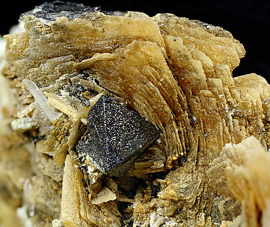 Roweite with Olshanskyite, Magnetite and Andradite.