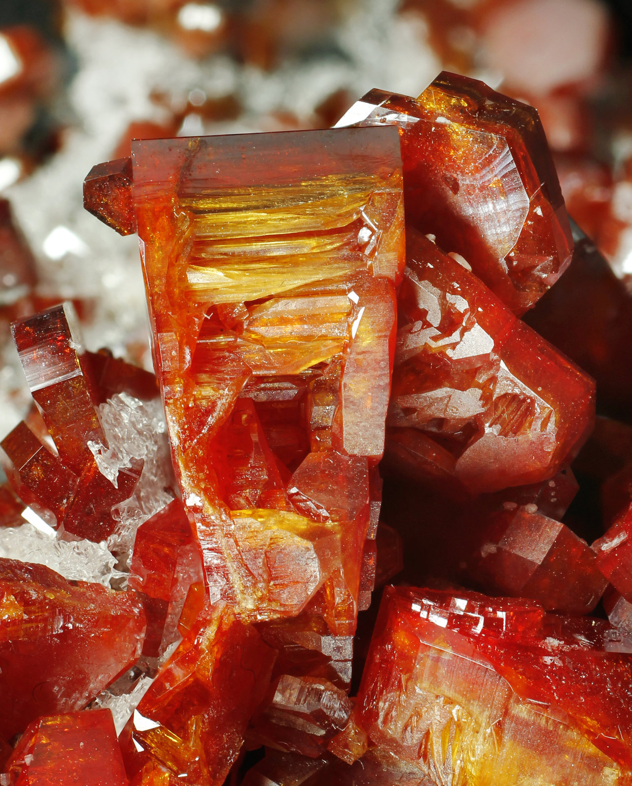 specimens/s_imagesAK1/Vanadinite-AB16AK1_0308_d2.jpg
