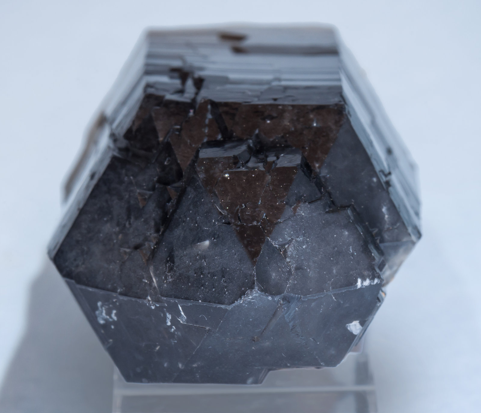 specimens/s_imagesAK4/Quartz_smoky-DH26AK4t.jpg