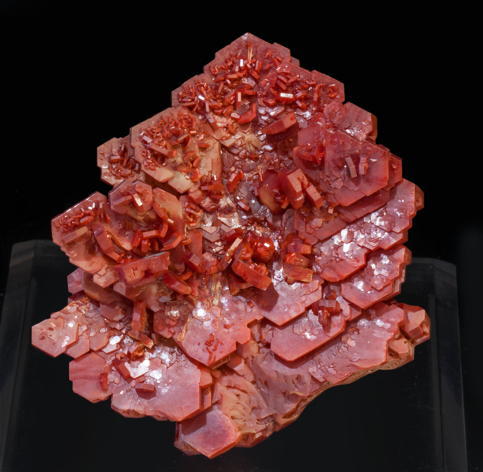 specimens/s_imagesAK6/Vanadinite-MZ27AK6r.jpg