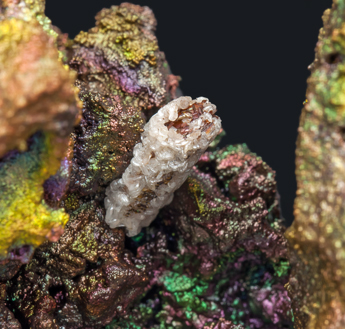 Cerussite after Anglesite with Goethite.
