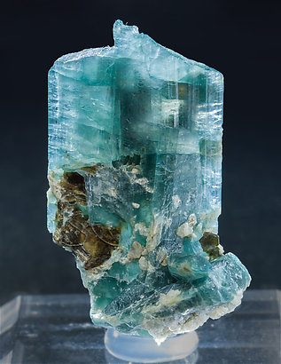Grandidierite with Phlogopite. Light behind