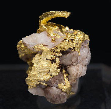 Gold with Quartz. Rear