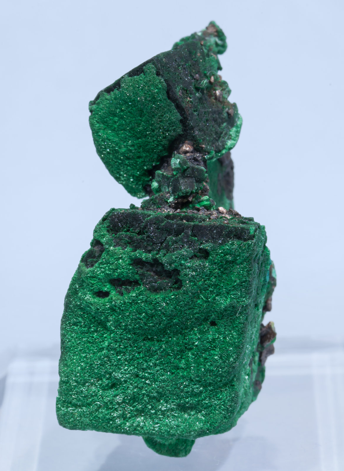 specimens/s_imagesAK8/Malachite-EY48AK8f.jpg