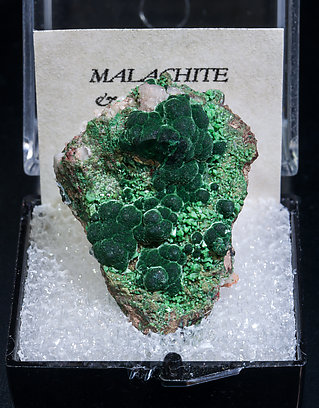 Malachite with Adamite (variety cuprian).