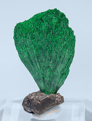 Malachite with Cerussite. Front