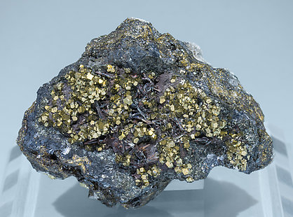 Hutchinsonite with Pyrite and Galena.