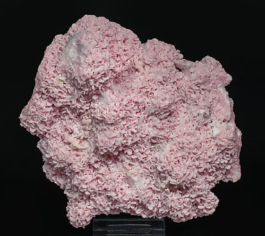 Rhodochrosite with Baryte and Dolomite.