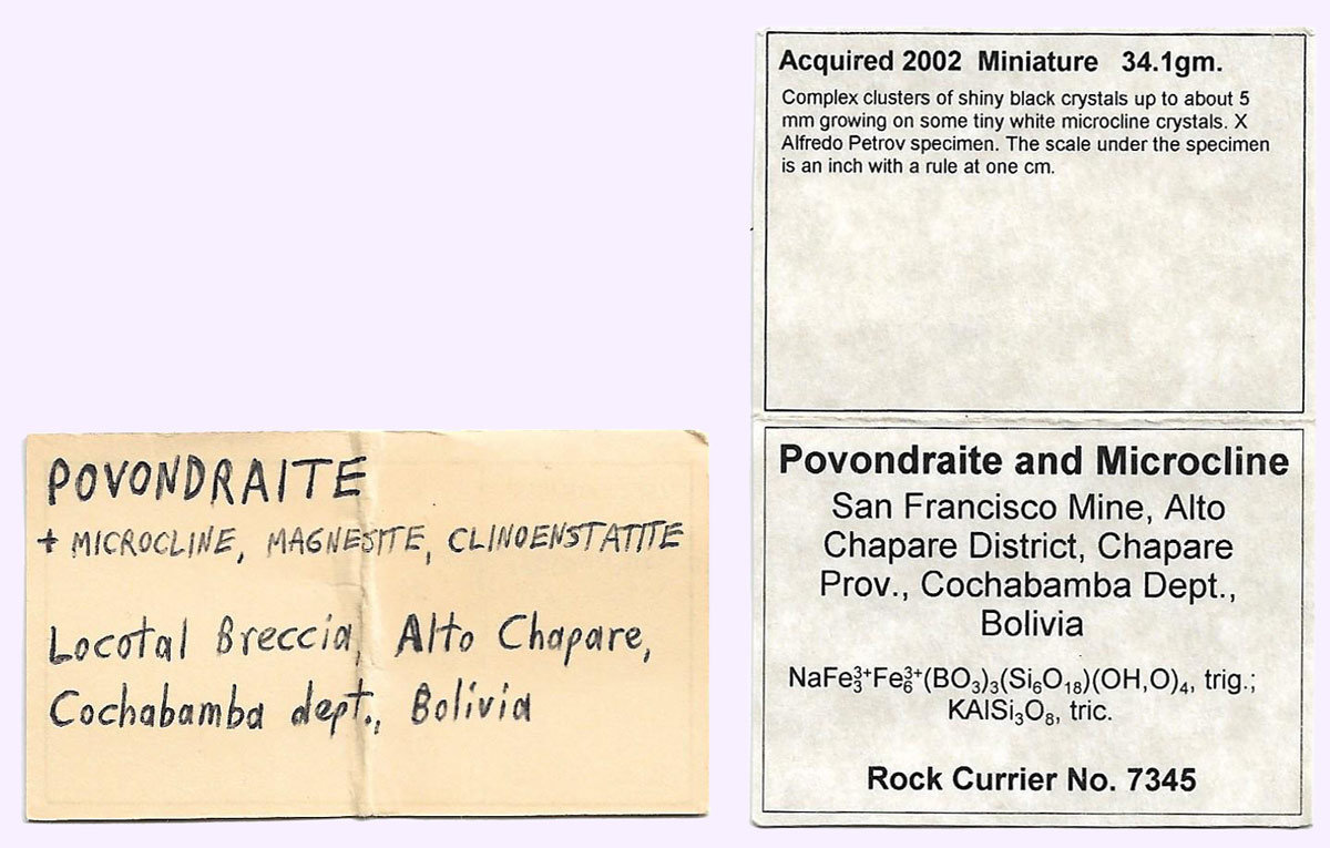 specimens/s_imagesAL1/Povondraite-TH90AL1e.jpg