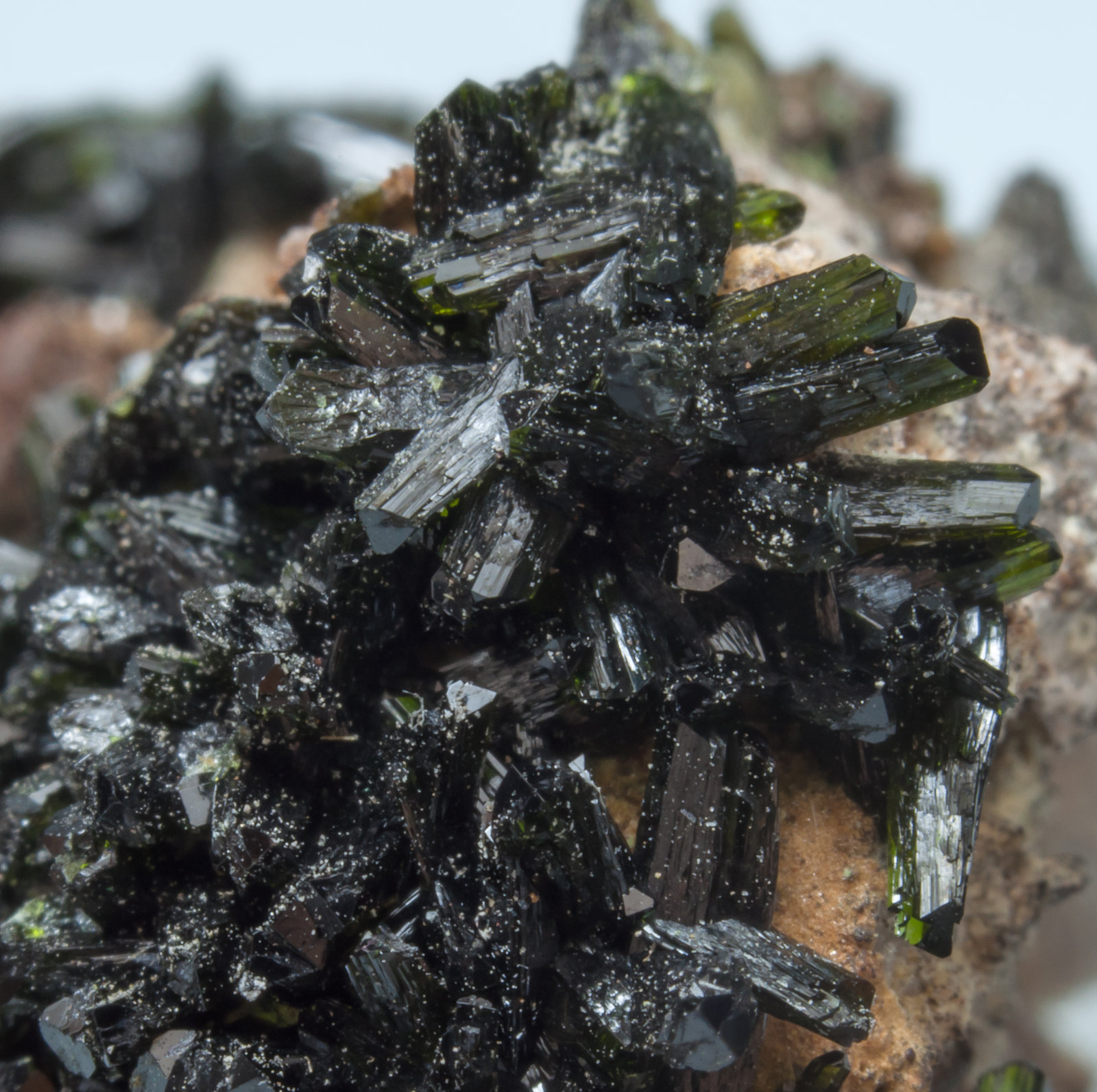 specimens/s_imagesAL2/Olivenite-TT51AL2d2.jpg