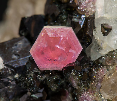 Pezzottaite with Schorl and Quartz.