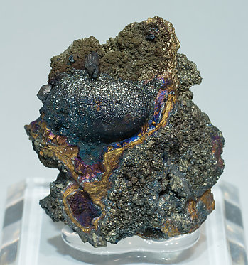 Sb-rich Tennantite-(Fe) with Pyrite.