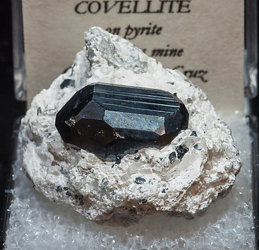 Chalcocite on Pyrite.