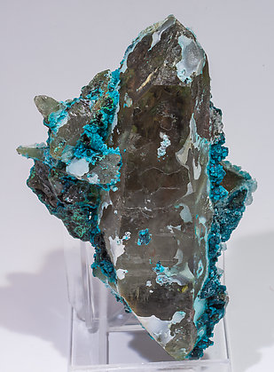 Chrysocolla on Quartz. Front