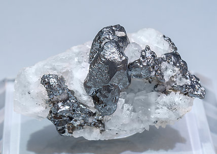 Acanthite with Calcite. Front