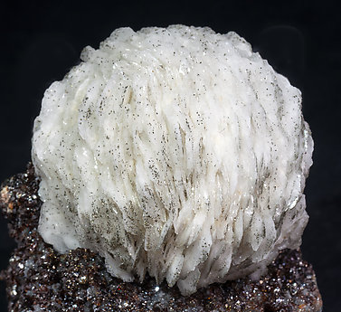 Baryte with Sphalerite and Pyrite.