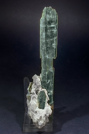 Tremolite with Dolomite (consolidated).