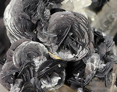 Hematite (variety iron rose) with Quartz. Detail / Photo: Joaquim Callén
