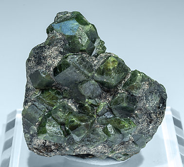 Chrysoberyl (variety alexandrite) with Phlogopite. Front - neon light (day light)