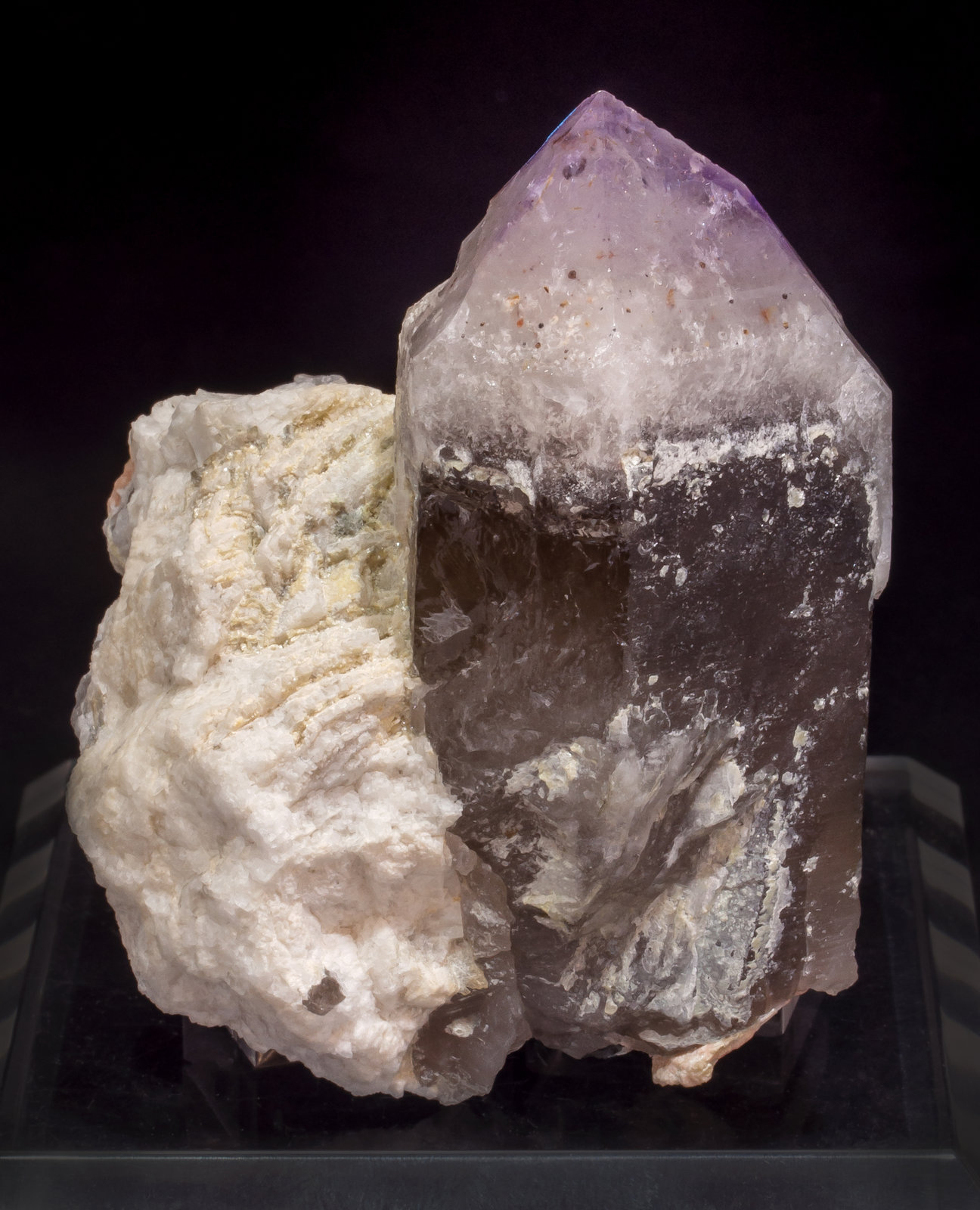 specimens/s_imagesAL9/Quartz_amethyst-NJ36AL9s.jpg