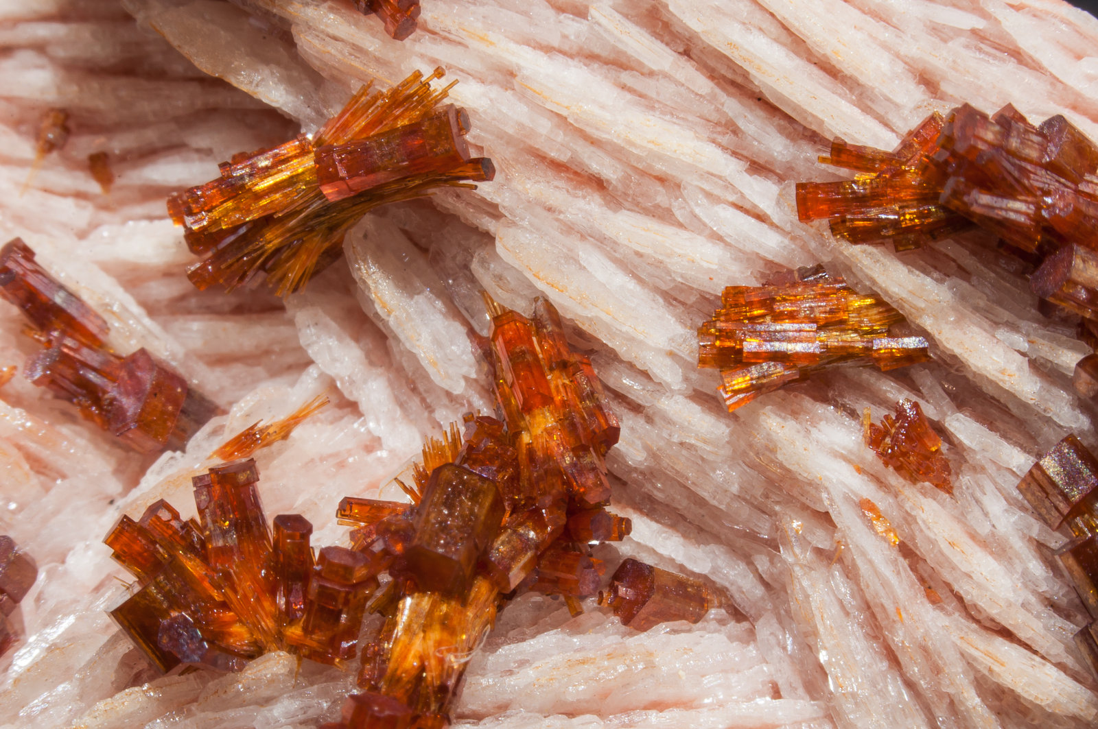 specimens/s_imagesAM0/Vanadinite-EF46AM0d.jpg