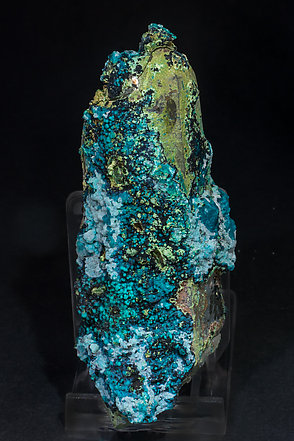 Chrysocolla on Quartz (variety smoky). Rear