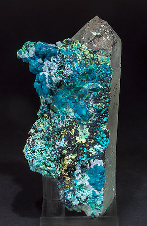 Chrysocolla on Quartz (variety smoky). Front