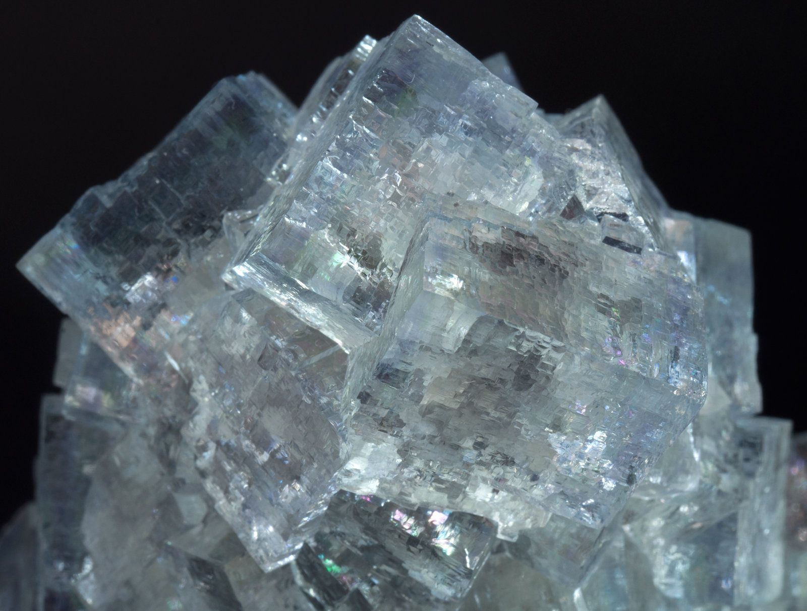 specimens/s_imagesAM1/Fluorite-NL94AM1d.jpg