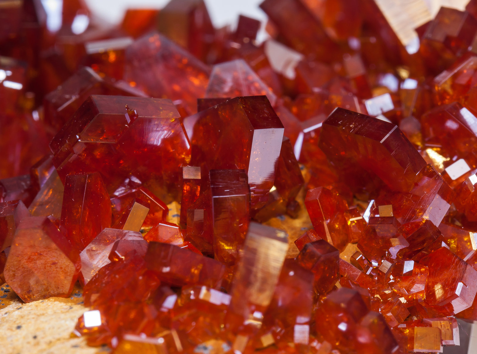 specimens/s_imagesAM2/Vanadinite-EB27AM2d.jpg
