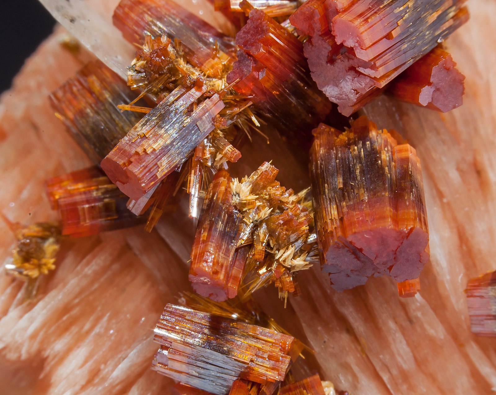 specimens/s_imagesAM2/Vanadinite-EC13AM2d.jpg
