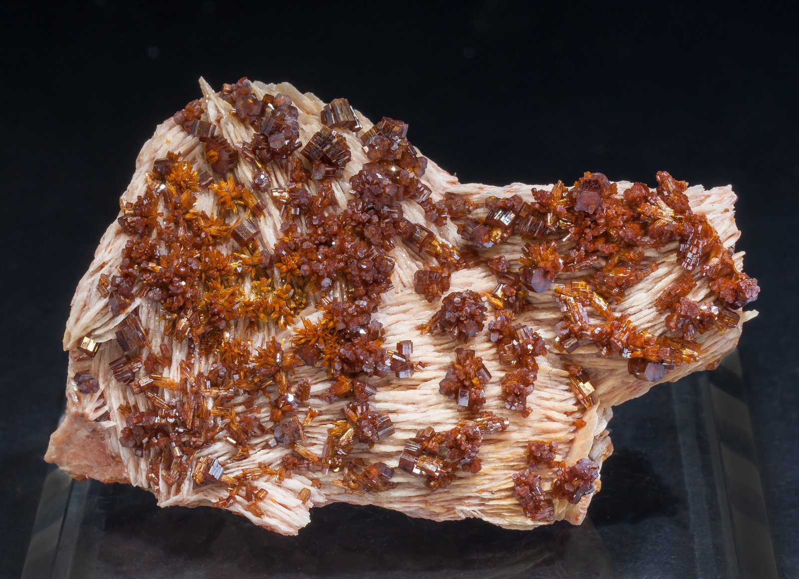 specimens/s_imagesAM2/Vanadinite-EJ56AM2f.jpg