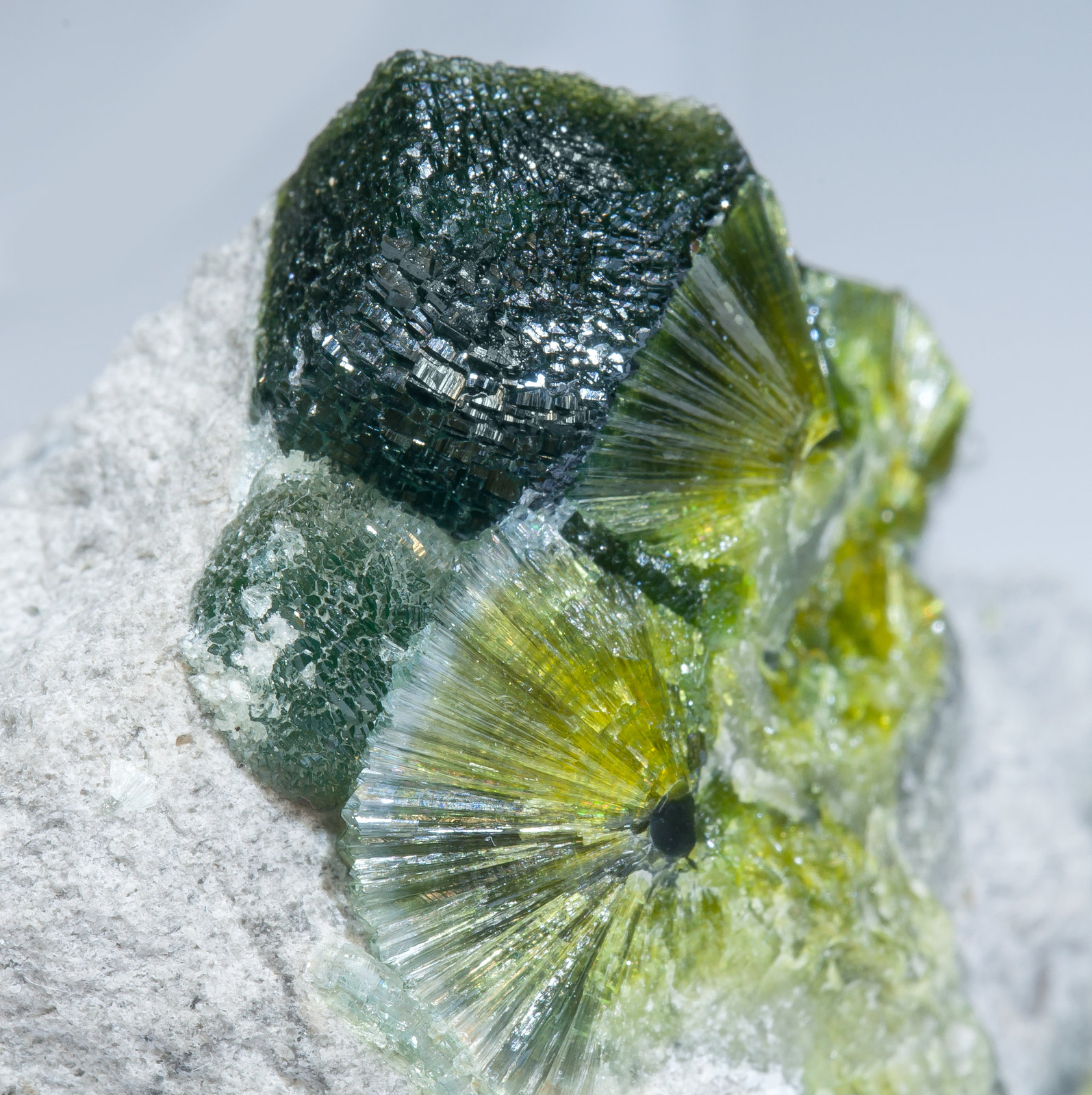 specimens/s_imagesAM2/Wavellite-HJ10AM2d.jpg