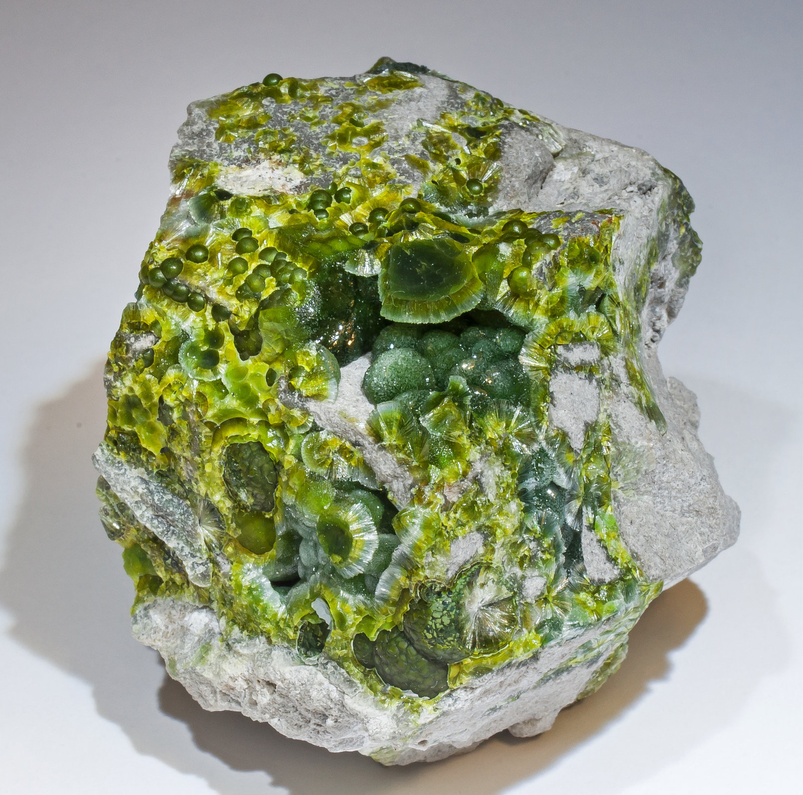 specimens/s_imagesAM2/Wavellite-HL14AM2f.jpg