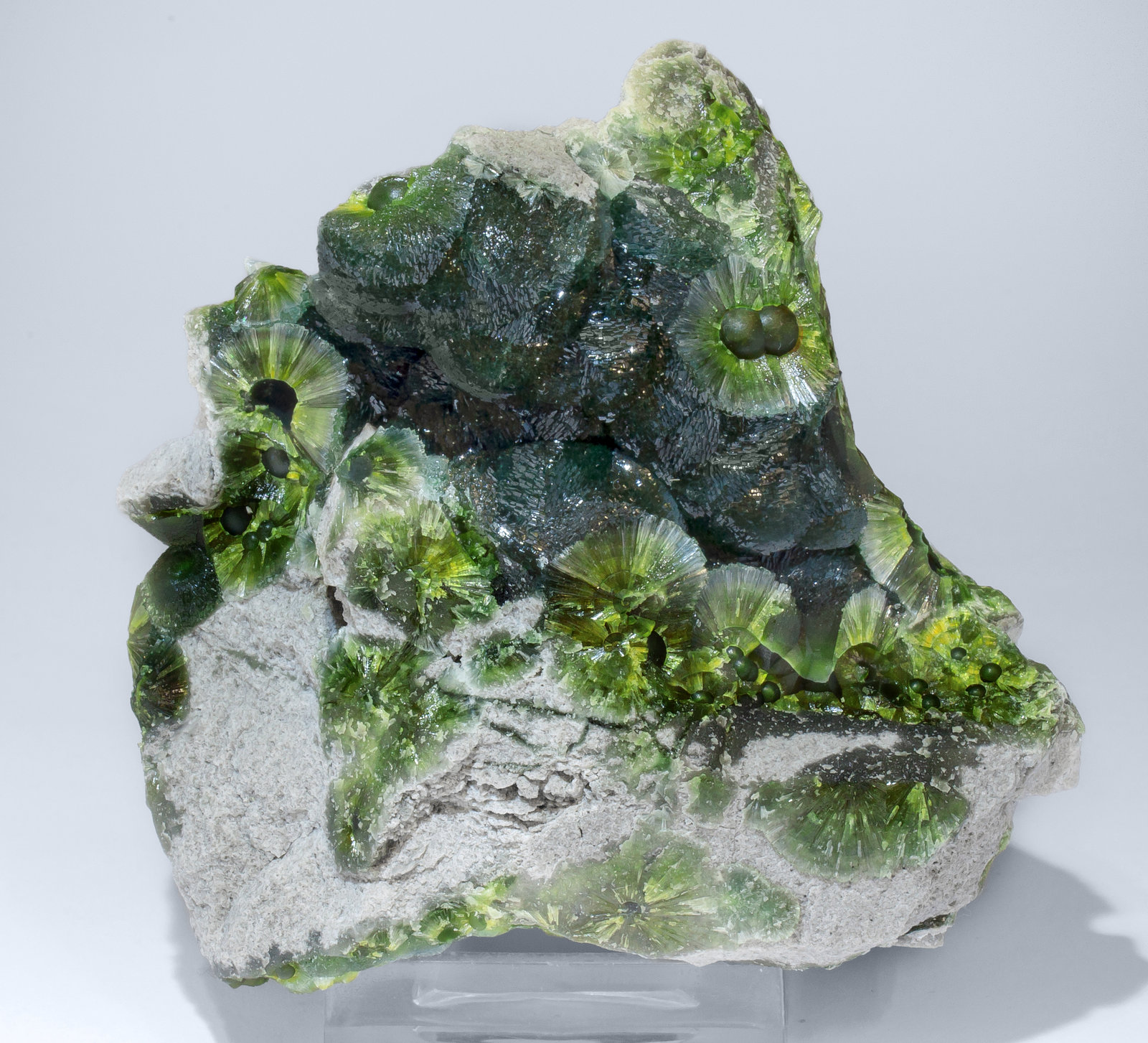 specimens/s_imagesAM2/Wavellite-HM87AM2f.jpg