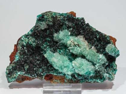 Aurichalcite with Calcite and Murdochite. Front