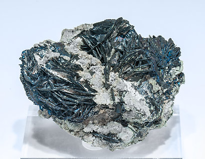 Covellite with Quartz.