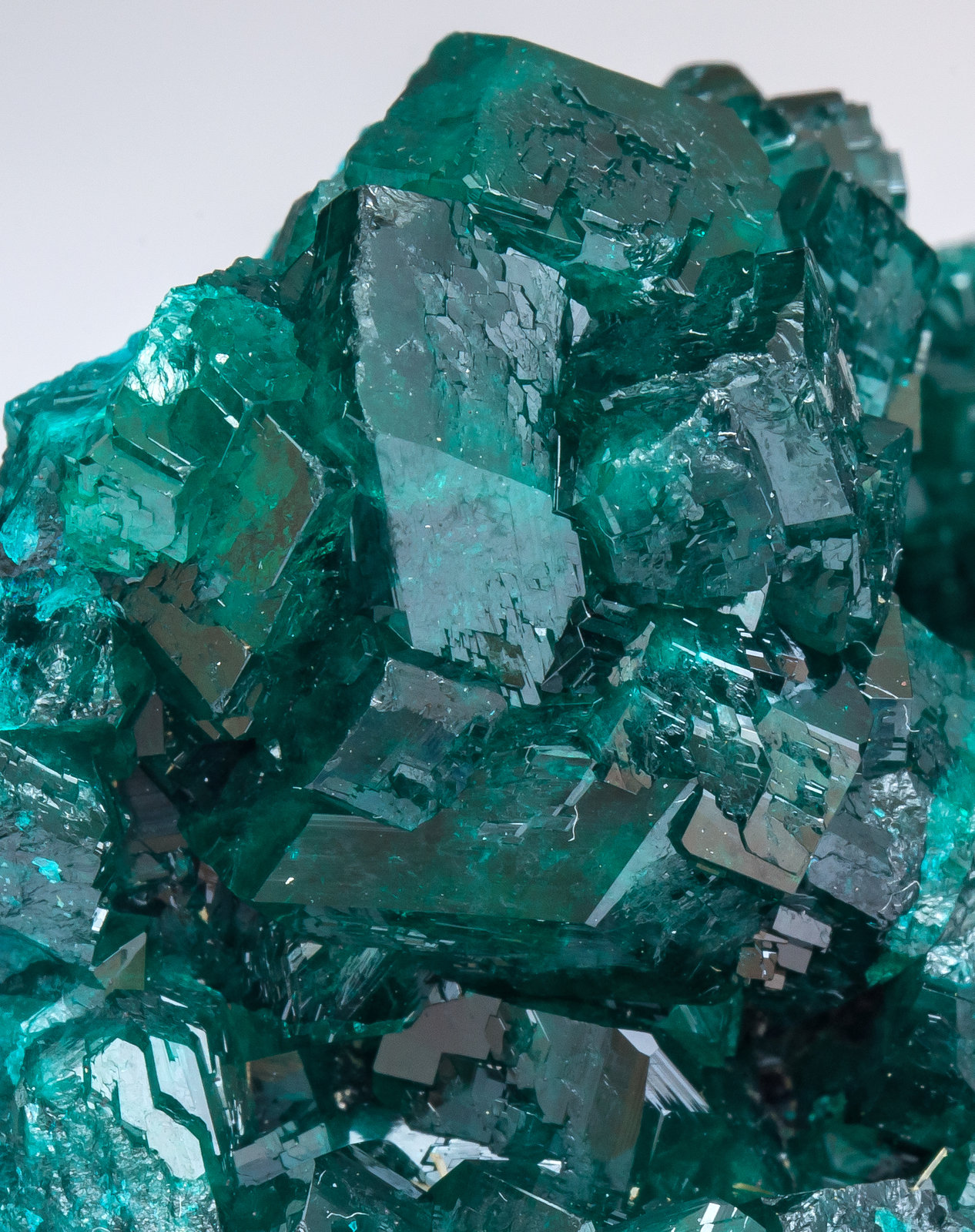 specimens/s_imagesAM4/Dioptase-NV27AM4d.jpg