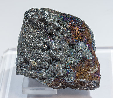 Tennantite-(Fe) coating Chalcocite.