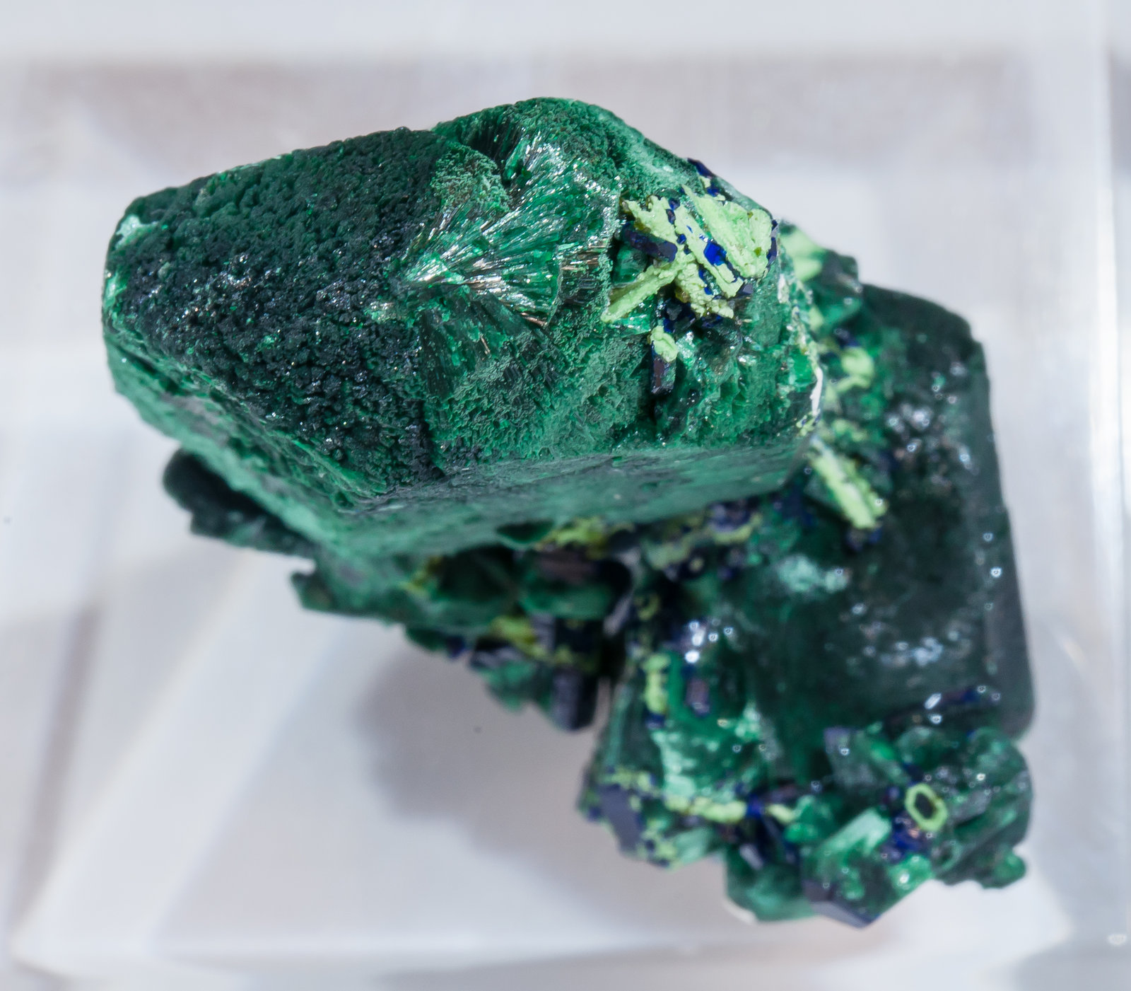specimens/s_imagesAM5/Malachite-CC27AM5t.jpg