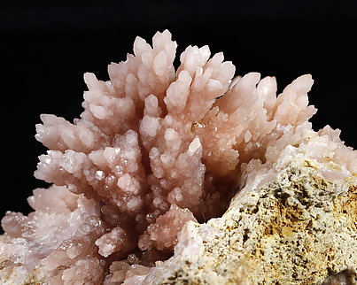 Quartz (variety rose quartz). Detail / Photo: Joaquim Callén