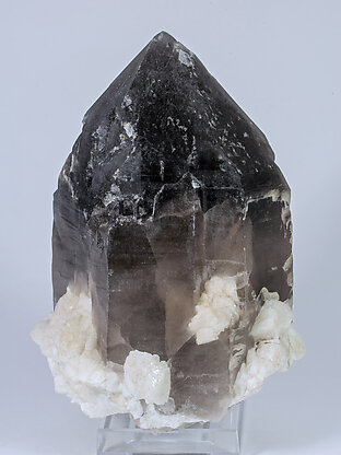 Quartz (variety smoky) with Albite and Microcline. Front