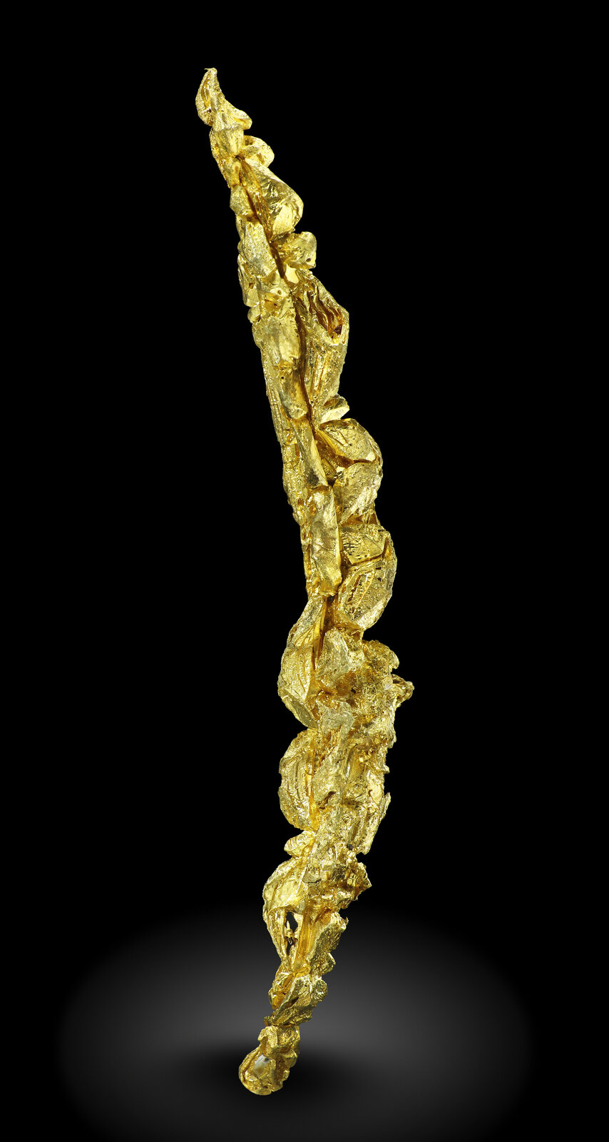 specimens/s_imagesAM8/Gold-MT47AM8_0170_f.jpg